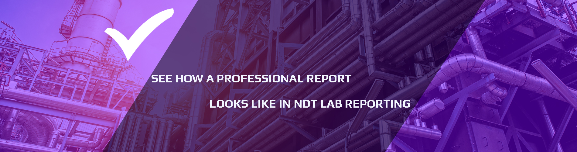 see-how-a-professional-report-looks-like-in-ndtlabreporting-full